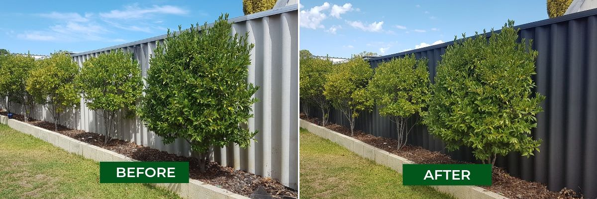 How To Paint A Hardifence Fence Makeovers Before And After